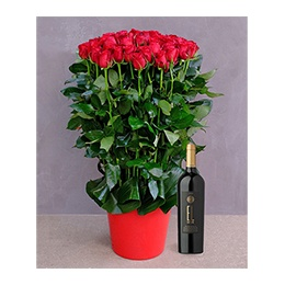 Flowerss and Wine:  60 Roses + 1 Bottle Ixsir EL