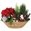 Christmas Arrangement: Holiday in Style